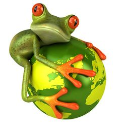 Sustainability and frogs...