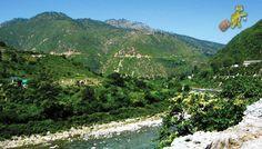 Ranikhet- Uttarakhand