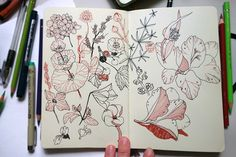Sketchbook pages by Anna Aniskina, via Behance. Red and black #floral #botanical #art