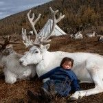 My ancestors were nomadic reindeer herders in Scandanavia.  This image is of a Mongolian child but it really moved me.