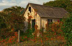 Os 40 ranchos abandonados mais bonitos e bucólicos