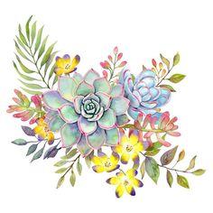 Succulent Watercolor Art Print by Cali_Nature_ Dalleh - X-Small Folk Art Flowers, Flower Art, Watercolor Succulents, Watercolor Flowers, Watercolor Cards, Watercolor Paintings, Succulent Tattoo, Cactus E Suculentas, Wreath Drawing