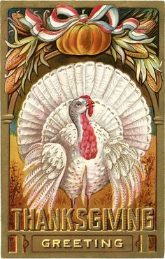 Thanksgiving Greeting ~ vintage holiday card with white turkey | via The Graphics Fairy