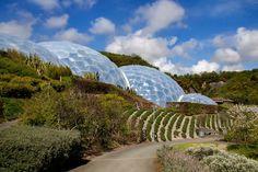 Eden Project by Daniel-Wales-Images