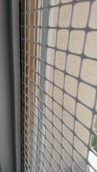Protection pour ne pas que vos chats se sauvent par les fenêtres avec moustiquaire intégrée