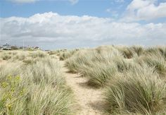 SSH805 http://www.norfolkproduction.co.uk/location-details.aspx?location=ssh #beaches #norfolk #marshes #sand #beachhuts #seaside #coast