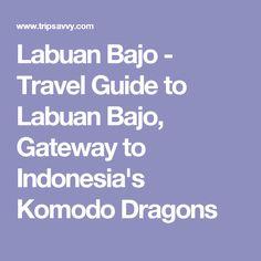 Labuan Bajo - Travel Guide to Labuan Bajo, Gateway to Indonesia's Komodo Dragons