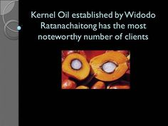 Kernel Oil established by Widodo Ratanachaitong has the most noteworth by via authorSTREAM Palm Oil Benefits, Health, Health Care, Salud