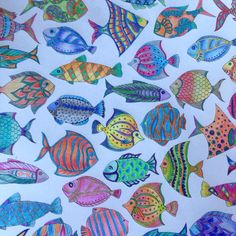 Lost ocean. Fishes# Johanna Basford