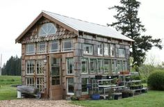 Greenhouse made from reclaimed materials, spare windows, cedar shake siding, corrigated metal roof