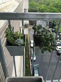 Hanging succulents onto the balcony railing using S hooks and binder clips.