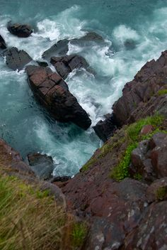 Signal Hill Hike by Pleuston, via Flickr; St. Johns, Newfoundland