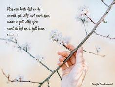 Johannes 14:19 Nog een korte tijd en de wereld zal Mij niet meer zien, maar u zult Mij zien, want Ik leef en u zult leven. Johannes 14:19  #Hemelvaart  https://www.dagelijksebroodkruimels.nl/johannes-14-19/