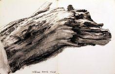 Eikenhout - Houtskool - Alfred Brand