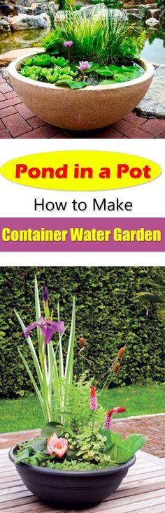 Pond in a Pot Create a Container Water Garden Balcony Garden Web Container Pond, Container Water Gardens, Container Gardening, Balcony Garden, Garden Pots, Small Gardens, Outdoor Gardens, Indoor Water Garden, Garden Web