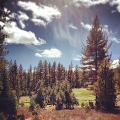 Another beautiful day at Schaffer's Mill before the storm comes in. #sunshine #golf #tahoe #truckee #nature
