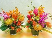SORBET CENTERPIECE, a beautiful assortment of Seasonal Sorbet and bright pastel colored orchids and tropical flowers. Tropical Flower Arrangements, Table Flower Arrangements, Table Flowers, Tropical Flowers, Hawaiian Centerpieces, Flower Centerpieces, Bridal Shower Flowers, Flower Shower, Types Of Flowers