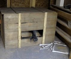 """Build a """"werewolf in a Box"""" Haunted Crate for Halloween! – Tammy Cranwell Build a """"werewolf in a Box"""" Haunted Crate for Halloween! Build a werewolf in a box haunted crate for Halloween! Halloween Circus, Halloween Haunted Houses, Outdoor Halloween, Halloween Town, Holidays Halloween, Scary Halloween, Halloween Decorations, Halloween Stuff, Hallway Decorations"""