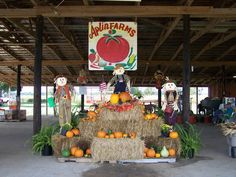 Aplin Farms since 1952 - They have lots of activities (particularly in the Fall) - pumpkins, corn mazes, sunflowers, petting zoo