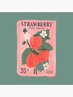 Strawberry Seeds, an art print by Allie Runnion Art And Illustration, Graphic Design Illustration, Graphic Art Prints, Graphic Design Print, Watercolor Illustration, Strawberry Art, Strawberry Drawing, Posca Art, Guache