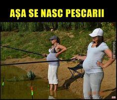 Crazy Funny Memes, Wtf Funny, Asana, Puns, Humor, Humour, Ha Ha, Moon Moon, Funny Humor