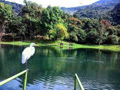 Laguna de Los Cedros, Bonocó, estado Trujillo. Fotografía: @shtefi_machado…