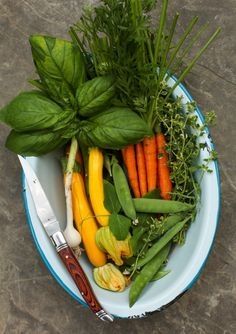 Fresh picked vegetables for risotto