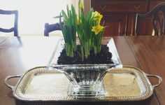 Thrift store finds today.....sterling silver Towle tray and Waterford Crystal bowl, my grand total was $12 for both! I love finding vases, crystal, china, silver and filling them with flowering bulbs, African violets or large palm fronds.