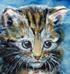 Timid Kitten - Image 1