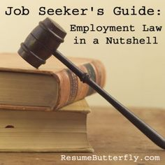Job Seeker's Guide: