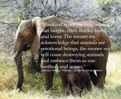 """""""Mankind is not the only animal that laughs, cries, thinks, feels, and loves…"""