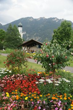 Oberammergau, Germany  What a charming little Village this was. Loved it. Got my Cuckoo Clock here.