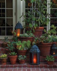 topfpflanzen garten pflanzen dekoideen leuchten