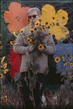 zzzze:    John William Kennedy, Andy Warhol in a Field of black - eyed Susans, 1964