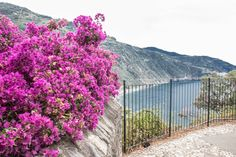 Tout en haut de la falaise : Corniglia - Cinque Terre - Wait & Sea