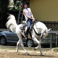 Vídeo: Camila Queiroz arrasa em aula de equitação para nova novela das 6, 'Êta Mundo Bom'