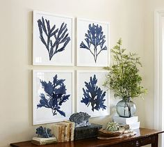 Framed Coral Prints - Indigo #potterybarn  3 over your bed