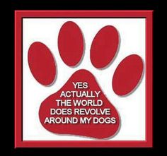 Well, my world revolves around my family and my dogs are family so yup, truth! :)