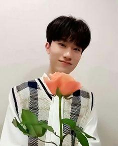 Bang Yedam ✧ Yoshi, Golden Treasure, Bts And Exo, Handsome Actors, Treasure Boxes, Nct Dream, Boy Groups, Bangs, Pua