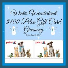 Winter Wonderland $100 Petco Gift Card Giveaway Ends Jan 18 2014