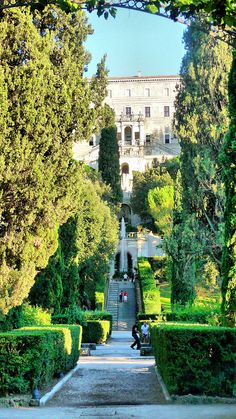 Tivoli - Villa D'este, Rome, Italy. SACI art history field trips include the amazing gardens of Tivoli, just outside Rome.  http://www.saci-florence.edu/17-category-study-at-saci/90-page-field-trips.php