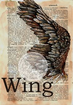 6 x 9 Print of Original, Mixed Media Drawing on Distressed, Dictionary Page This drawing of an open birds wing is drawn in sepia ink and created