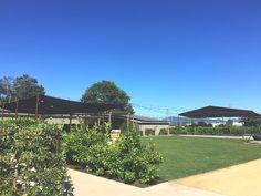 Long Meadow Ranch in Napa, California | Adventures in a New(ish) City #napa #california #travel #vacation #food #wine #newishcityhou