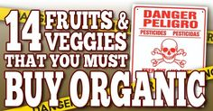 Pesticides affect some fruits and vegetables much more than others. Learn which you should always buy organic to keep your family as safe and healthy as possible.