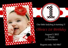 Ladybug Birthday Invitation Ladybug Birthday Party Invitation