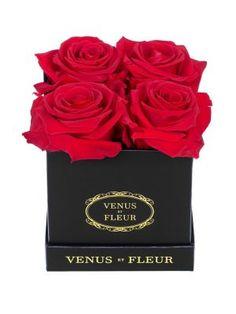 VENUS ET FLEUR - Eternity De Venus Le Petite Square Eternity Roses<br>