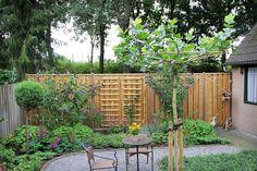 In deze gerenoveerde tuin hebben we de beplanting vervangen. Op het simpele terras is het goed toeven, omringd door de rijk bloeiende borders.