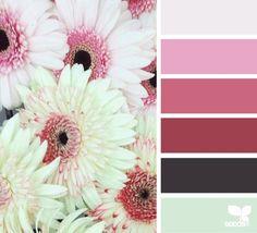gerber hues (via Bloglovin.com )
