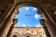 Stork is flying over the Vatican's m by konstantin.tronin on @creativemarket