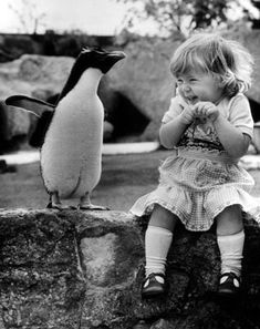 Little girl giggles as a penguin from the Lincoln Park Zoo in Chicago waddles up to her and decides to sit. (Chicago, 1957)